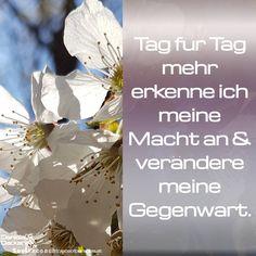 #affirmation #sprüche #selbstcoaching #selbstbewusstsein #selbstliebe #selbstvertrauen #selbstwert #seelencoaching #mantra Mantra, Affirmations, Self, Tags, Self Confidence, Self Awareness, Graz, Thoughts, Self Love Affirmations