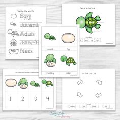 Have fun learning about sea turtles with these adorable sea turtle life cycle worksheets. See the parts of a sea turtle, their life cycle stages and more. Preschool Science, Preschool Lessons, Art Lessons Elementary, Sea Turtle Life Cycle, Life Cycle Stages, Turtle Book, Turtle Crafts, Baby Sea Turtles, Sea Turtles
