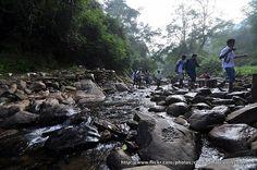 Sathuragiri Hills, Tamil Nadu