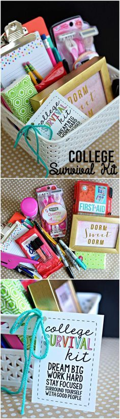 Quick and Easy College Survival Gift Basket - 70+ Inexpensive DIY Gift Basket Ideas - DIY Gifts - Page 4 of 14 - DIY & Crafts