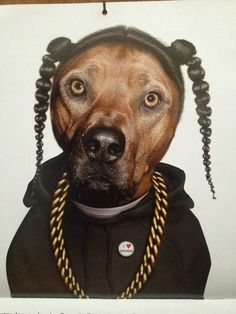 Snoop Dogg dog... I may need to frame this for Eric's room in the new house.  Fo shizzle!!!