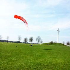 Lets go fly a kite. Go Fly A Kite, Softies, Dublin, Letting Go, Phoenix, Ireland, Let It Be, Park, Instagram