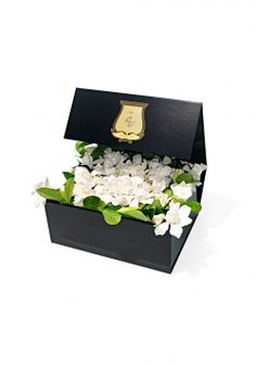 Deluxe Vine and Bloom Box