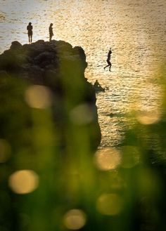 pinterest is all new to me... SO don't know how to say HELLO and THANK YOU... except to PIN it :)) Happy to see people I love here!    Photo/Alisa Greig. Waimea Bay, Hawaii