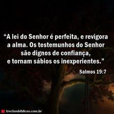 Salmos 19-7