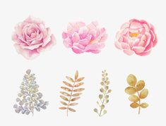 Hand-painted pink watercolor flowers, Flowers, Decorative Pattern, Hand Painted PNG and PSD