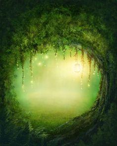 LIFE MAGIC BOX Silk Like Fairy Tale Forest Green Background Newborn Photography Backdrop Design