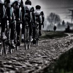 Riding the cobbles, yesterday: Paris-Roubaix. Amazing what these cyclists do! And the winner is. Paris Roubaix, Cycling Art, Road Cycling, Cycling Bikes, Road Bikes, Bicycle Race, Bike Run, Road Bike Women, Cargo Bike