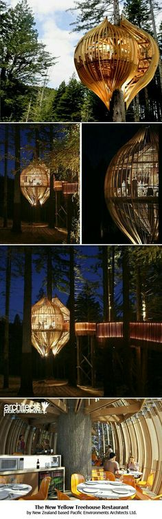 New Zealand's Whimsical Yellow Treehouse Restaurant Towers Above The Redwood Forest