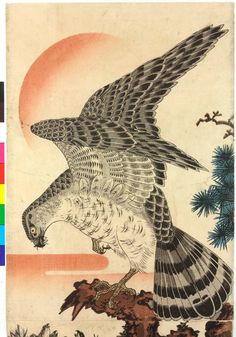 Woodblock diptych print, vertical oban format. An eagle perched on a pine tree, feeding insects to its young in a nest below; the setting sun in the background.