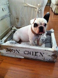 "Even if I don't have a French Bulldog, my pups will have a cute little bed that says ""mon chien"" on it. love."
