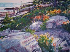 Painting of Maine Coast, Acadia. This is an image we enjoy. Hope you enjoy it too - Little Hawk Trading, a favorite eBay store - Clothing & Shoes for LESS - http://stores.ebay.com/Little-Hawk-Trading