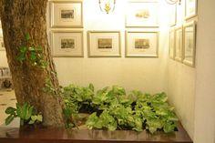 One with Nature! #Bradburry #OIADesign #Pune #hotels