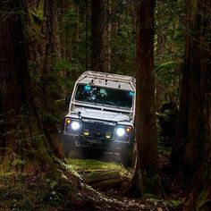 Land Rover Defender 110 Td5 Sw County adventure forest