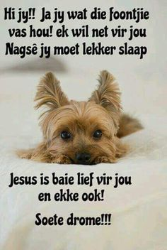 Good Night Blessings, Good Night Wishes, Good Night Sweet Dreams, Good Night Quotes, Good Night Image, Good Morning Good Night, Christian Messages, Christian Quotes, Lekker Dag