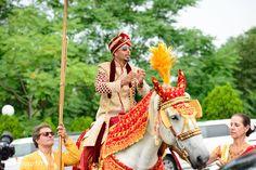 White horse for baraat http://www.maharaniweddings.com/gallery/photo/95417