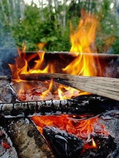 Campgrounds Open in Riding Mountain National Park - NewsWinnipeg. Go Camping, Camping Hacks, Riding Mountain National Park, Campfire Breakfast, Beautiful Moments, Outdoor Fun, Stargazing, Bushcraft, The Great Outdoors
