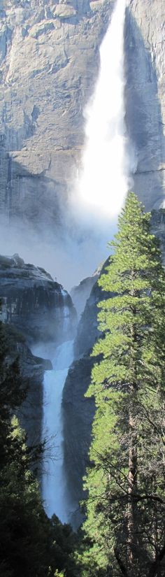 Yosemite Falls at Yosemite National Park in the Sierra Nevada of California ~ Photo: Sparky and Eldo on Where's Eldo? Beautiful Waterfalls, Beautiful Landscapes, Sacramento, Beautiful World, Beautiful Places, Ville New York, Yosemite Falls, Les Cascades, Parcs