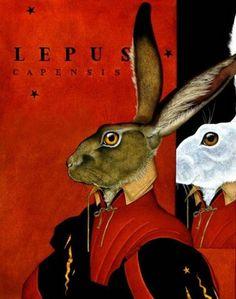 beaux tableaux de carol lawson - Page 3 Zoo 2, Hare Illustration, Illustrations, Jack Rabbit, Rabbit Art, Lapin Art, White Rabbits, Bunny Rabbits, Year Of The Rabbit