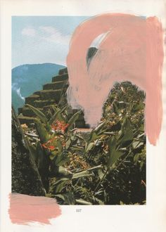 Rosemarie Auberson's Mixed Media Art - Blush Paint | drawingdiary: Rosemarie Auberson www.rosemarieauberson.com