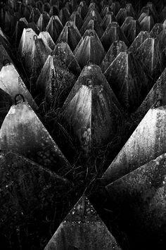 Sacred Geometry <3