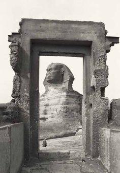 Egypt, sphinx.