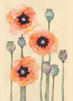 Shirley Poppies by Buttermoths on Etsy, - Illustration Art Papercraft Art Floral, Motif Floral, Doodle Drawing, Painting & Drawing, Poppy Drawing, Color Draw, Watercolor Flowers, Watercolor Paintings, Poppies Art