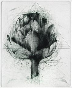 "Jake MUIRHEAD "" Artichoke ""  drypoint. Looks like a drypoint on top of another plate that has been partially sanded down."
