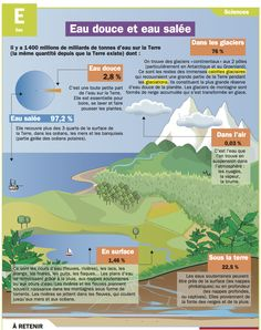 Educational infographic : Eau douce et eau salée Teaching Science, Science For Kids, Earth Science, Science And Nature, French Teaching Resources, Teaching French, French Education, Education College, Student Portal