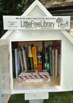 My Cadette daughter, Miranda, recently earned her Girl Scout Silver Award. Her project, Little Free Libraries of Taylor, consisted of constructing and inst
