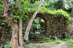 The ruins at Hampstead Estate © Lorna Parks / Lonely Planet