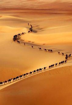 Caravanas en un desierto.