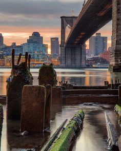 "2,611 Me gusta, 43 comentarios - Matt Chimera (@matthewchimeraphotography) en Instagram: ""Underneath the Brooklyn bridge. A throwback to my all time favorite sunrise #nyc #newyork…"""