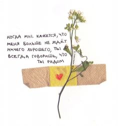 Sweet Words, Cute Pins, Love Can, Quote Aesthetic, Mehendi, Illusions, It Hurts, Poems, Sad