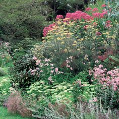 How to make a great garden border