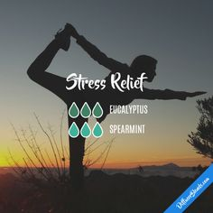 Stress Relief - Essential Oil Diffuser Blend