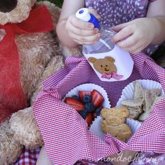 Teddy bear picnic basket - kid's party