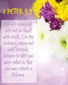 Repay Evil With Blessing www.wendywoerner.com Find out what God says about evildoers and how we are to treat them! #encouragement in your #faith