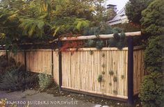 privacy screen above fence - Google Search