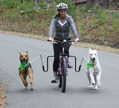 Super cool! :) Enter to win The Springer Dog Exerciser/Jogger from Springer America Inc! It is a bike attachment that allows you to safely bike with your dog. Enjoyed by 650,000+ dog-loving bicyclists around the world since 1988, the Springer is quick and easy to install. Visit http://www.runningk9.com and take advantage on PetsPage members exclusive discount of 10% off! Use the promo code PETSPAGE at checkout. :) Enter our Summer Prize Giveaway at http://www.PetsPage.com :)