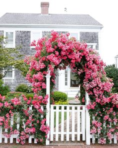Nantucket and Martha's Vineyard are some of my favorite places I've never been to! We'll soon be off to Cape Cod for a week and have day trips planned to both islands…can't wait! Garden Cottage, Home And Garden, Nantucket Island, Nantucket Style, Cottage Style Homes, Climbing Roses, Garden Gates, Garden Entrance, Dream Garden