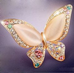 Like and Share if you want this  2 colors for choose Opal and rhinestone brooches for women scarf bukle wedding butterfly brooch pins fashion jewelry good gift     Tag a friend who would love this!     FREE Shipping Worldwide     Buy one here---> http://jewelry-steals.com/products/2-colors-for-choose-opal-and-rhinestone-brooches-for-women-scarf-bukle-wedding-butterfly-brooch-pins-fashion-jewelry-good-gift/    #cheap_earrings