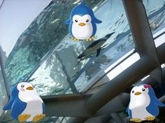 輪るペンギンなう