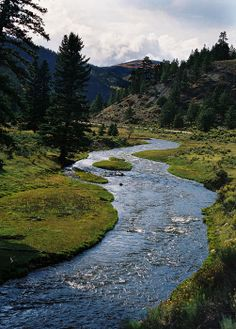 Costilla Creek, New Mexico; photo by Ron Weathers