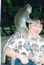 Monkey forest Bali Indonesia