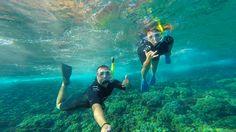 Snorkel em Molokini Crater Maui, Hawaii