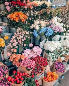 pinterest: chandlerjocleve instagram: chandlercleveland #Flora&Fauna-Flowers&Plants