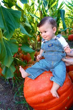 Pumpkin Patch Baby Picture