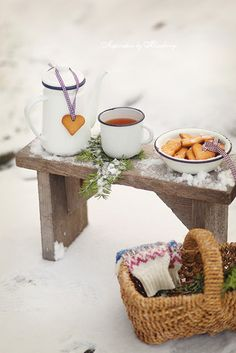 Who Says Picnics Are Just For Summertime Winter Cabin Winter Snow Winter Time