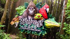 Rainforest Cafe Animal Kingdom ~ what a fun place to eat!  You might get caught in a thunderstorm!